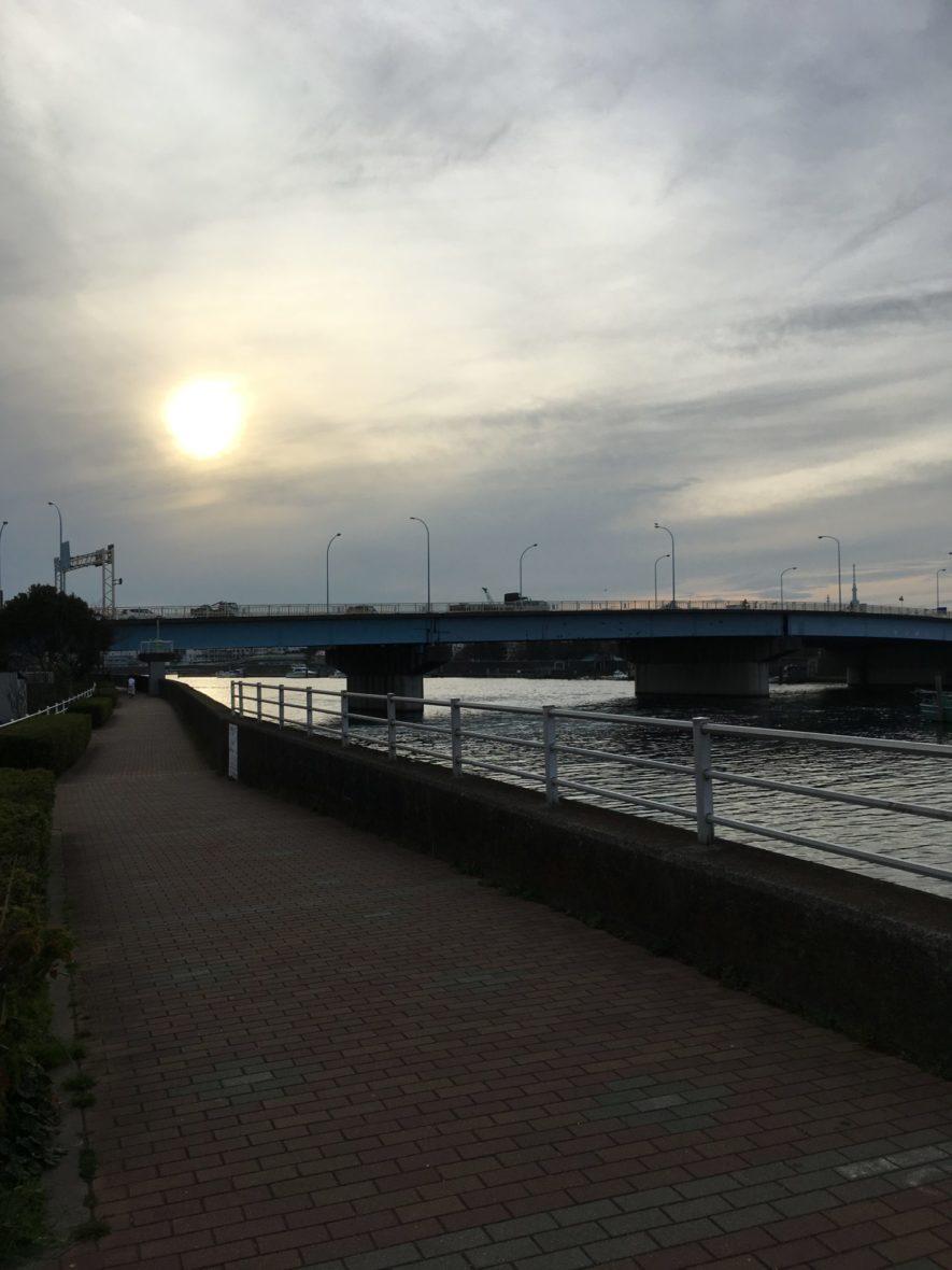 旧江戸川ランニングコース