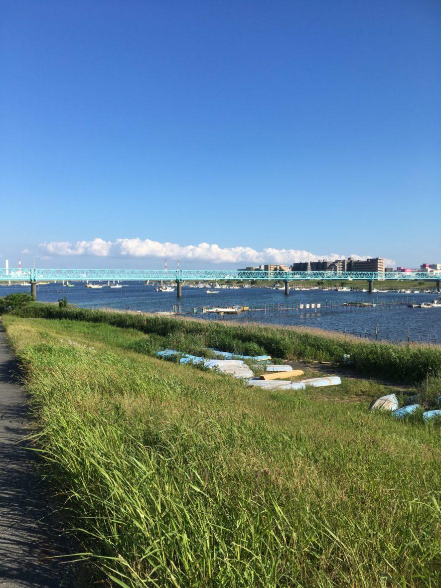 江戸川と旧江戸川